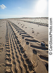 タイヤトラック, sand., point., 消失, 見通し, 浜, トラクター