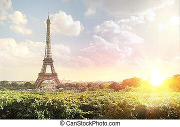 タワー, エッフェル, evening.