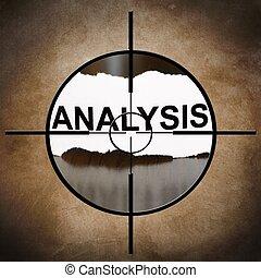 ターゲット, 分析