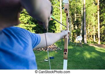 ターゲット, 運動選手, 成長した, 板, 矢, 狙いを定める, 森林