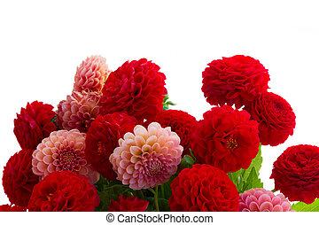 ダリア, 花, 花束