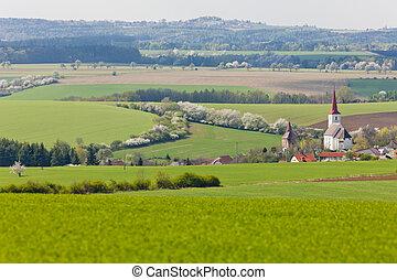 チェコ, vitice, 共和国