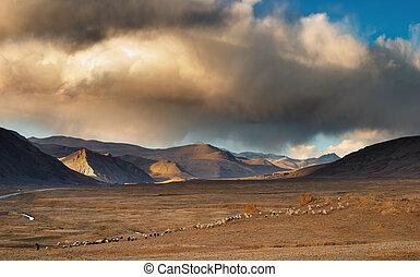 チベット人, 風景
