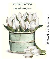 チューリップ, 花束, 型, つぼ, 現実的, ベクトル, 花