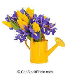 チューリップ, 花, 美しさ, アイリス