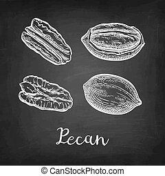 チョーク, スケッチ, pecan