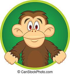 チンパンジー, カートン