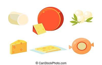 チーズ, 新たに, イラスト, ベクトル, プロダクト, おいしい, 各種組み合わせ, 様々, チーズが多い, タイプ