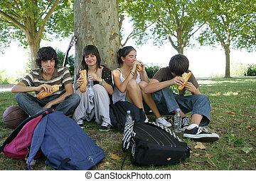 ティーネージャー, ピクニック, 公園