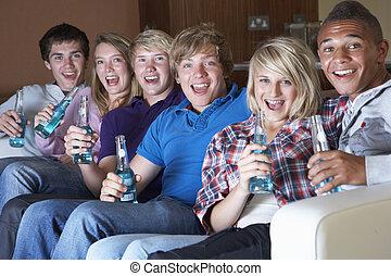 ティーンエージャーの, グループ, アルコール, 監視, ソファー, モデル, 家, 飲むこと, 友人