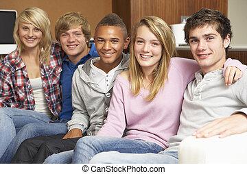 ティーンエージャーの, グループ, モデル, ソファー, 家, 友人