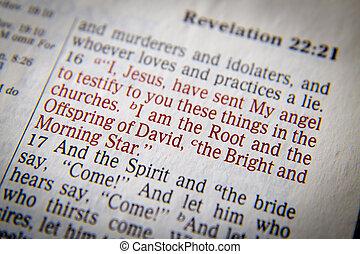 テキスト, 聖書, 意外な事実, 22:16