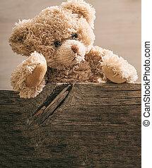 テディ, の後ろ, テンプレート, 熊, カード, 木製の板