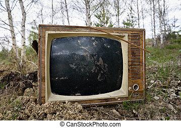 テレビ, 古い, 捨てられた, 森林, アナログ