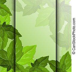 テンプレート, texture., 美しい, 緑, 装飾用である, 葉, 森林, 葉, 背景, フレーム, foliage., 抽象的なデザイン, template.