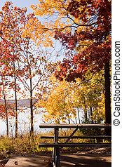 テーブル, ピクニック, 秋