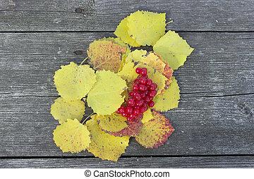 テーブル, 葉, 黄色