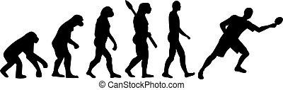 テーブル, 進化, テニス