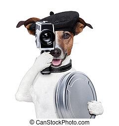 ディレクター, 映画, 犬