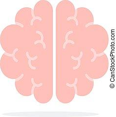 デザイン, 平ら, 材料, ベクトル, オブジェクト, 脳, 隔離された, 人間, 白, バックグラウンド。