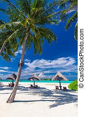 デッキチェア, 木, やし 浜, 傘