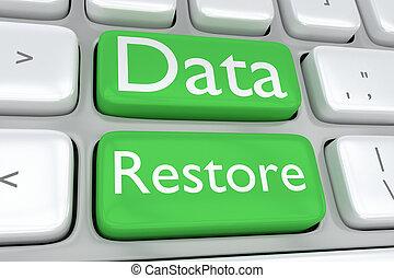 データ, 復活させなさい, 概念