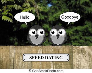 デートする, スピード, 鳥