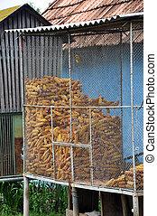 トウモロコシ, 貯蔵, 背景, 理想