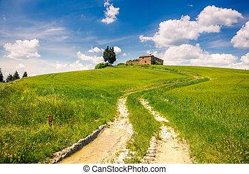 トスカーナ, 春, 風景