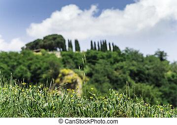 トスカーナ, 風景