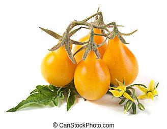 トマト, さくらんぼ, 黄色