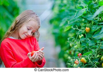 トマト, わずかしか, キュウリ, トマト, greenhouse., 肖像画, 女の子, 収穫する, 愛らしい, hands., 子供