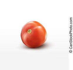 トマト, 白, ベクトル, 隔離された, 背景
