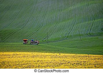 トラクター, 上に働く, 緑, そして, 黄色, 草