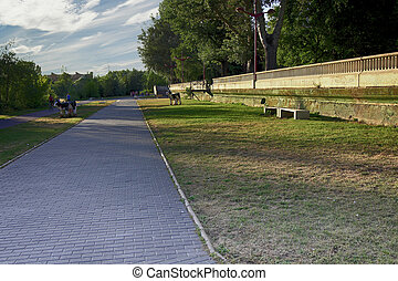トラック, ジョッギング, 公園