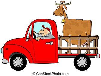 トラック, 強く引くこと, a, 牛