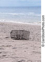 トラップ, カニ, 白, tigertail, 砂, ロブスター, 浜, 洗浄される