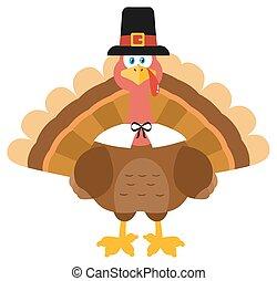 トルコ, 身に着けていること, 巡礼者, 感謝祭, 帽子, 鳥
