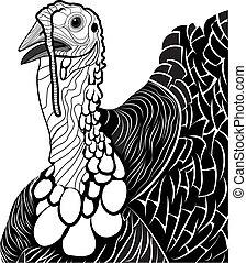 トルコ, 鳥ヘッド, シンボル, 感謝祭