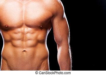トルソ, 筋肉, クローズアップ, に対して, 黒, 完全, 若い, 背景, 人間が立つ, ideal., 見る