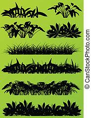 トロピカル, エキゾチック, ジャングル, 草, そして, 植物, 詳しい, シルエット, 風景, イラスト,...