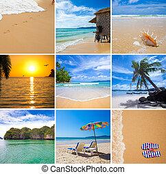 トロピカル, コラージュ, 休暇, 浜
