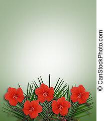 トロピカル, ハイビスカス, 花, backgroun