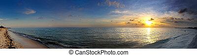トロピカル, パノラマ, 浜