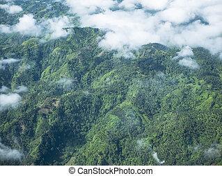 トロピカル, フィリピン, 風景