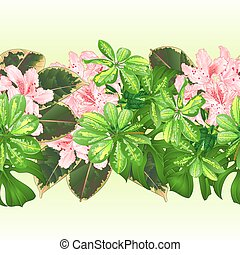 トロピカル, ボーダー, seamless, 背景, 熱帯の花, ライト, ピンク, ツツジ, vector.eps