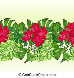 トロピカル, ボーダー, seamless, 背景, 熱帯の花, 赤, ツツジ, vector.eps