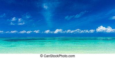 トロピカル, モルディブ, 浜