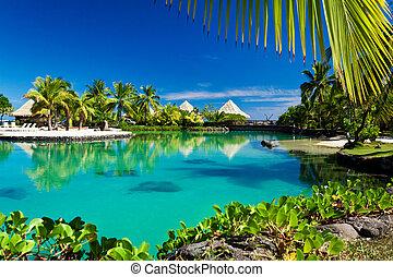 トロピカル, リゾート, ∥で∥, a, 緑, 礁湖, そして, ヤシの木