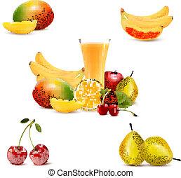 トロピカル, 夏, fruit., グループ, vector.